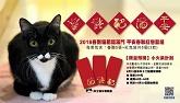 2018《紳士貓春聯紅包套組》